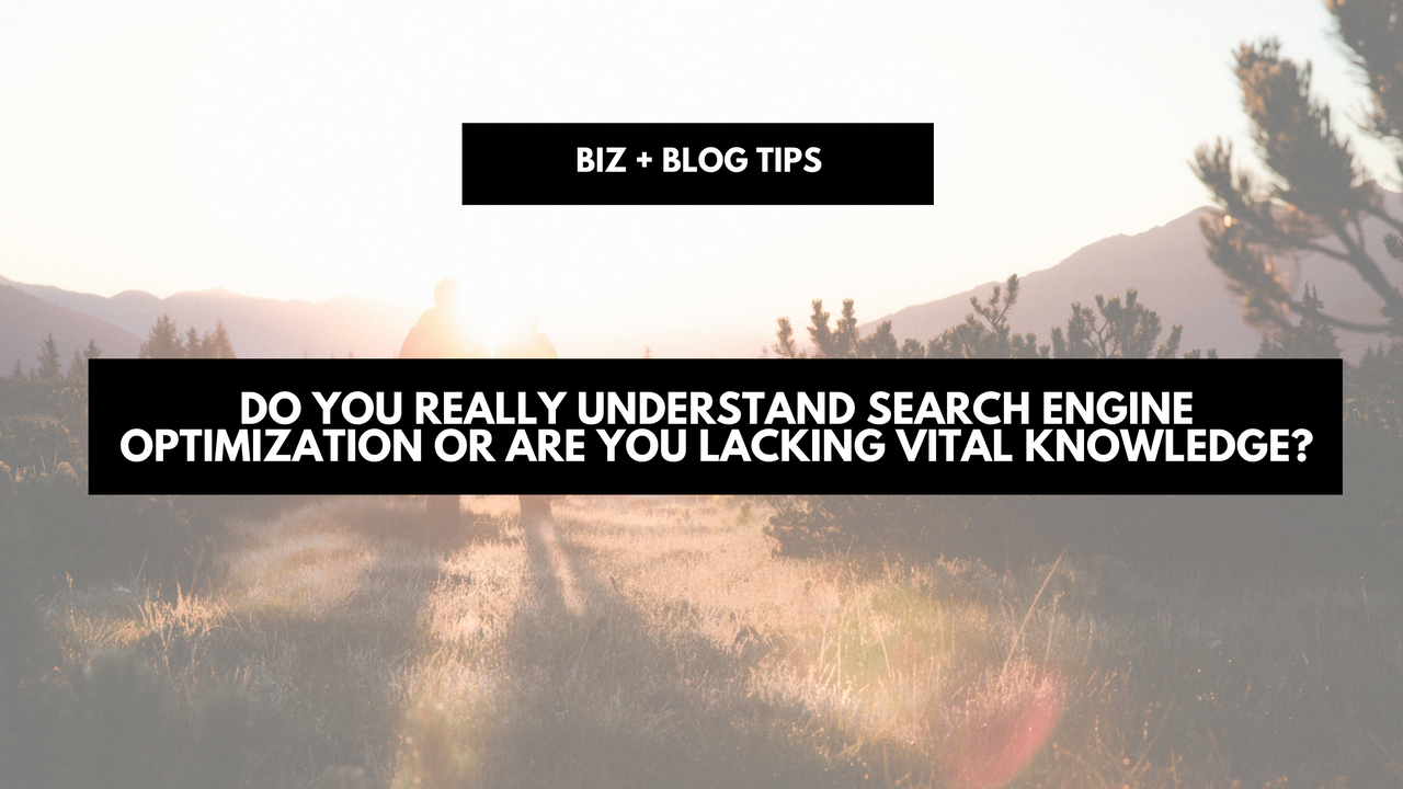 Do you really understand search engine optimization or are you lacking vital knowledge?