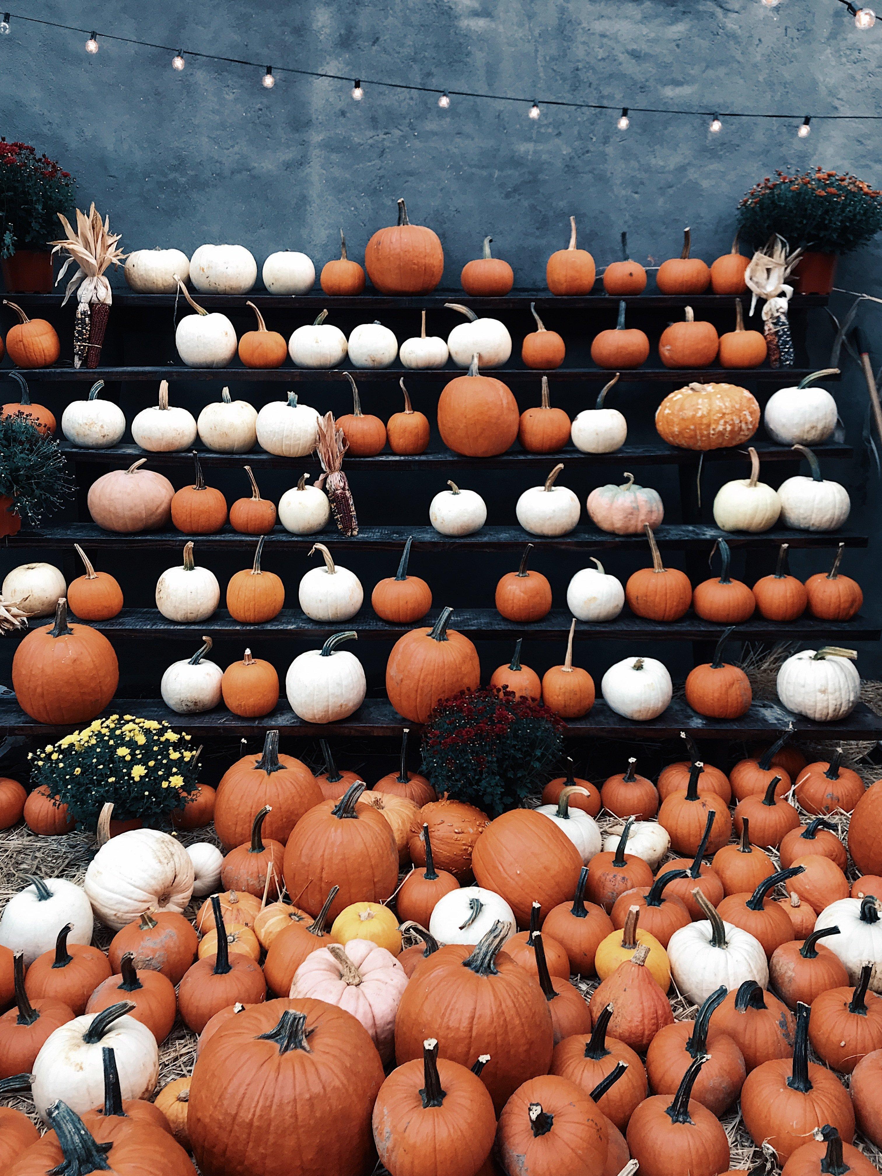 Fall Bucket list & Autumn Photography Challenge October